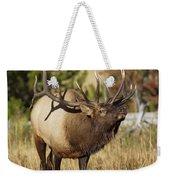 Bull Elk II Weekender Tote Bag