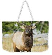 Bull Elk IIII Weekender Tote Bag