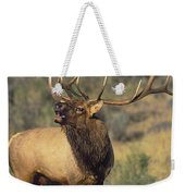 Bull Elk In Rut Bugling Yellowstone Wyoming Wildlife Weekender Tote Bag