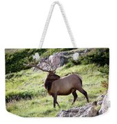 Bull Elk In Velvet Weekender Tote Bag