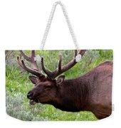 Bull Elk In Yellowstone Weekender Tote Bag