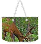 Bull Elk Near Maligne Canyon In Jasper Np-alberta Weekender Tote Bag