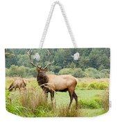 Bull Elk On Watch Weekender Tote Bag