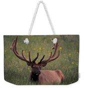 Bull Elk Resting Weekender Tote Bag