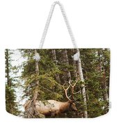 Bull Elk Stands Guard Weekender Tote Bag