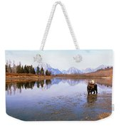 Bull Moose Grand Teton National Park Wy Weekender Tote Bag
