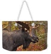 Bull Moose II Weekender Tote Bag