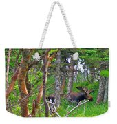 Bull Moose In Cape Breton Highlands Np-ns Weekender Tote Bag