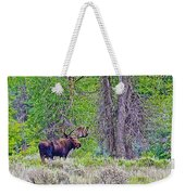 Bull Moose In Gros Ventre Campground In Grand Tetons National Park-wyoming Weekender Tote Bag