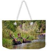 Bull Moose Summertime Spa Weekender Tote Bag
