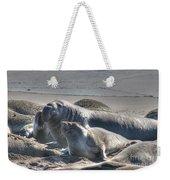 Bull Seal Weekender Tote Bag