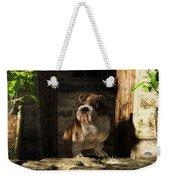 Bulldog In A Doorway Weekender Tote Bag