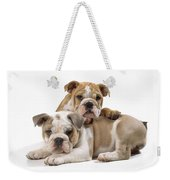 Bulldog Puppies, One On Top Of The Other Weekender Tote Bag