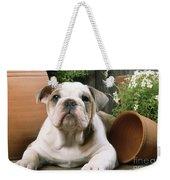 Bulldog Puppy With Flowerpots Weekender Tote Bag