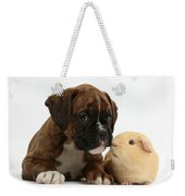 Bulldog Puppy With Yellow Guinea Pig Weekender Tote Bag