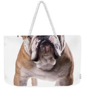 Bulldog Standing, Facing Camera Weekender Tote Bag