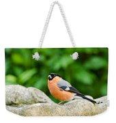 Bullfinch Weekender Tote Bag