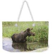 Bullwinkle  Weekender Tote Bag