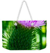 Bumble Bee On Bull Thistle Plant  Weekender Tote Bag