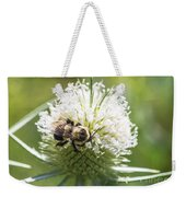 Bumble Bee On Button Bush Flower Weekender Tote Bag