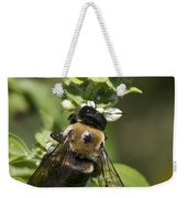 Bumblebees And Basil Weekender Tote Bag