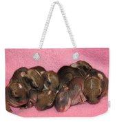 Bunny Baby Boom Weekender Tote Bag