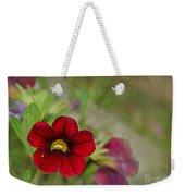 Burgundy Calibrochoa Blank Greeting Card Weekender Tote Bag