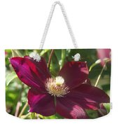 Burgundy Clematis Profile   # Weekender Tote Bag