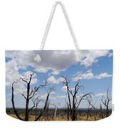 Burned Trees On Colorado Plateau Weekender Tote Bag