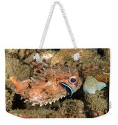 Burrfish And Cleaner Goby Weekender Tote Bag