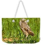 Burrowing Owl At It's Burrow Weekender Tote Bag