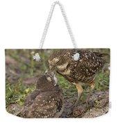 Burrowing Owl Feeding It's Chick Photo Weekender Tote Bag