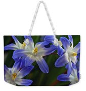 Burst Of Glory Weekender Tote Bag
