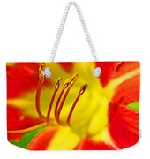 Bursting Bold Weekender Tote Bag