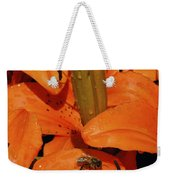 Busy Bee - 774 Weekender Tote Bag