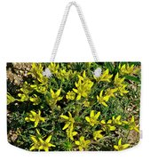 Buttercups In Cappadocia-turkey Weekender Tote Bag