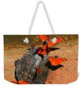 Butterflies And Turtle Weekender Tote Bag