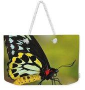 Butterfly 022 Weekender Tote Bag