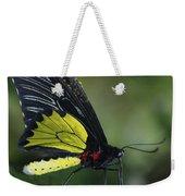 Butterfly 029 Weekender Tote Bag