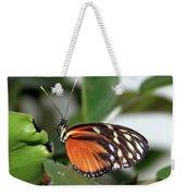 Key West Butterfly 2 Weekender Tote Bag