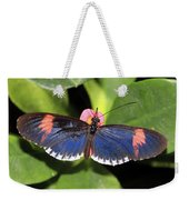 Key West Butterfly 3 Weekender Tote Bag