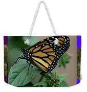 Butterfly Gold Photograph Insect Taken At Costa Rica Travel Vacation Unique Digital Painted Border B Weekender Tote Bag