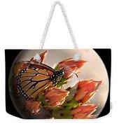Butterfly In A Globe Weekender Tote Bag