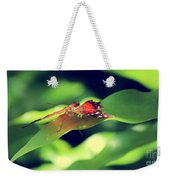 Butterfly Taking The High Ground Weekender Tote Bag
