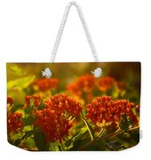 Butterfly Weed In The Sunset Weekender Tote Bag