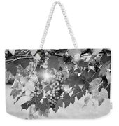 Bw Lens Flare Hanging Thompson Grapes Sultana Weekender Tote Bag