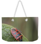 Cabbage Shield Bug Weekender Tote Bag