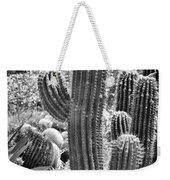 Cacti Habitat Bw Weekender Tote Bag by Kelley King