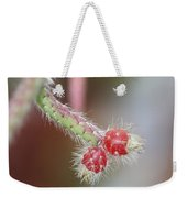 Cactus Berries Weekender Tote Bag