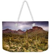 Cactus Canyon  Weekender Tote Bag